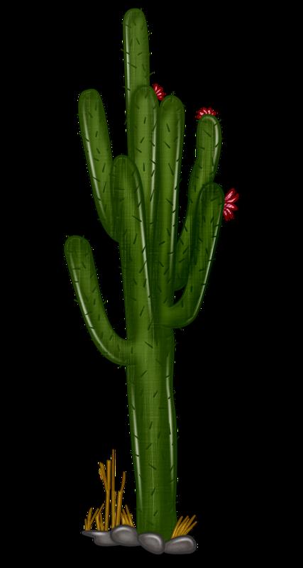 Mexico clipart cactus. Saguaro at getdrawings com