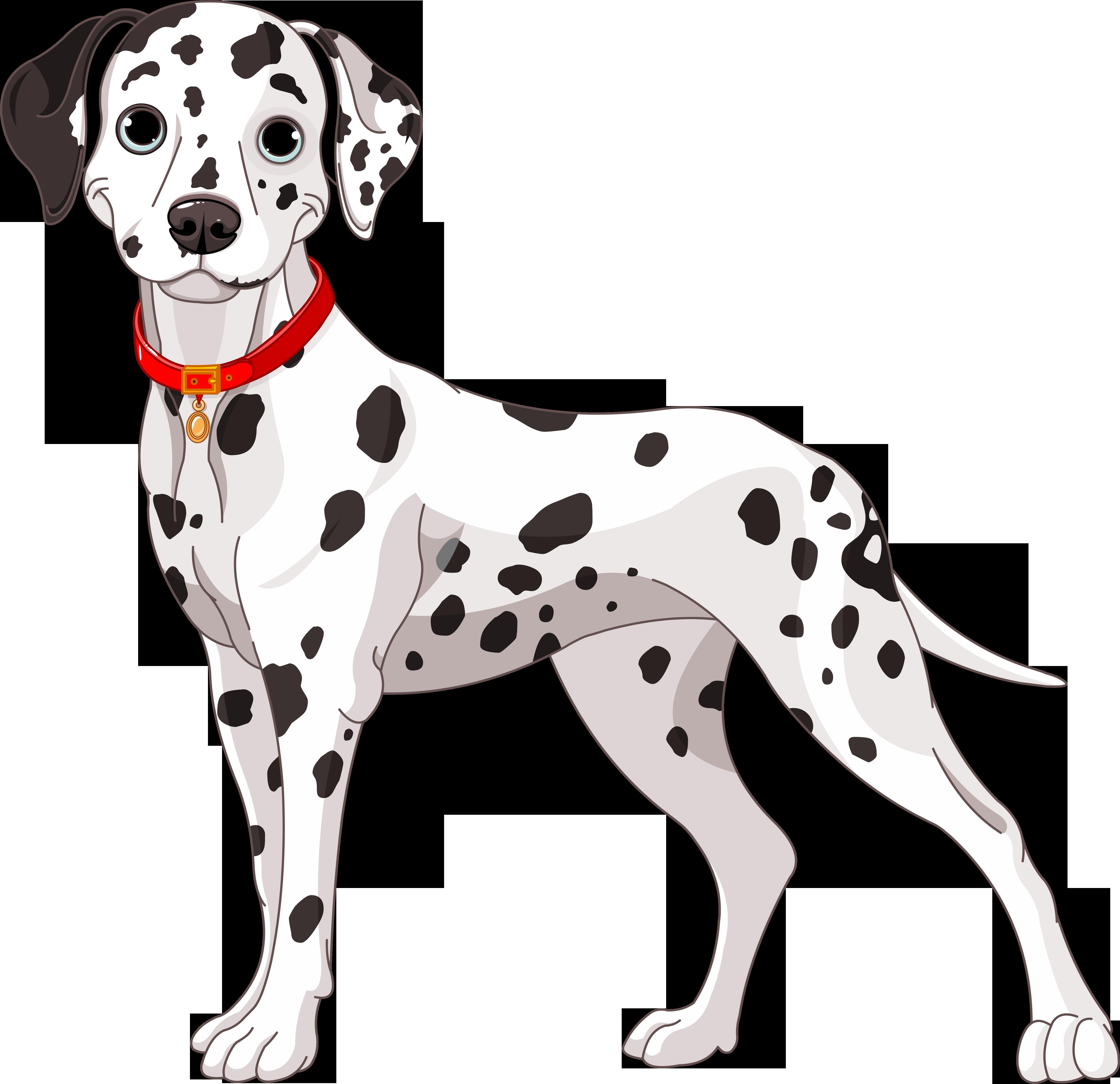 Pitbull clipart spotted dog. Img fotki yandex ru