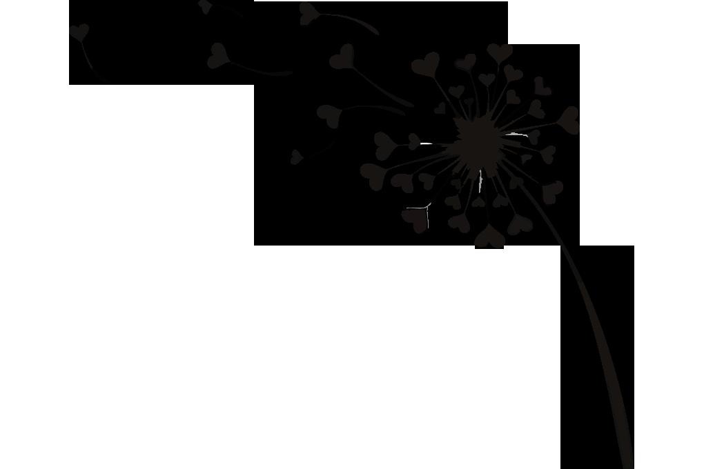 Dandelion drawn