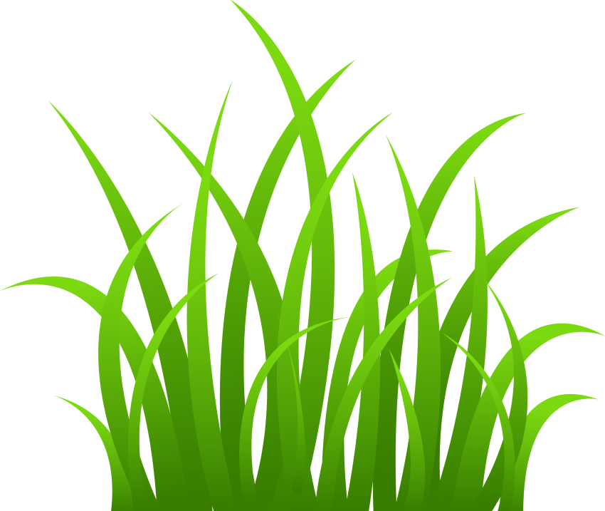 Hills clipart patch grass. Png free images toppng