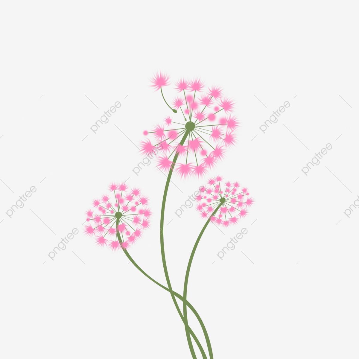 Hand painted flower plant. Dandelion clipart pink dandelion