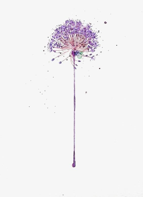 Dandelion clipart purple. Hand painted png abstract