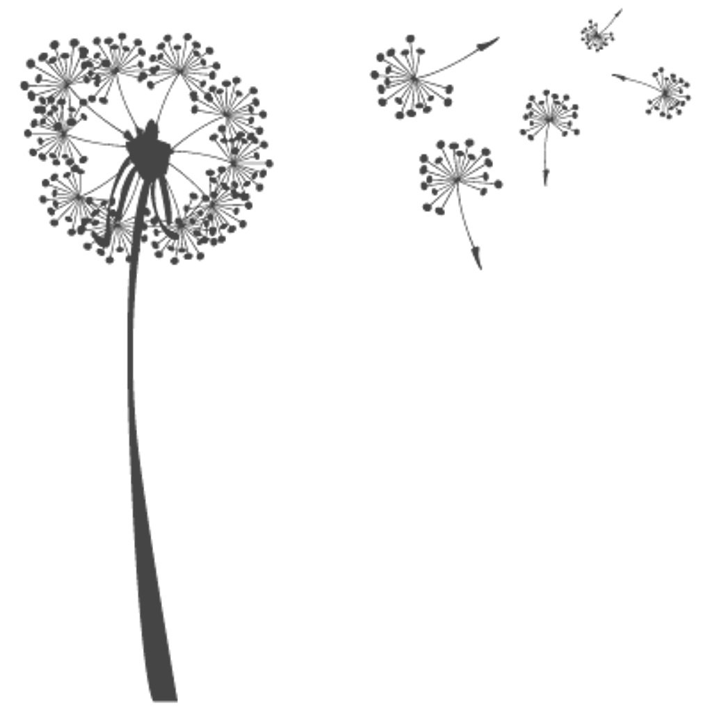 Freetoedit very pretty dandelionseeds. Dandelion clipart real
