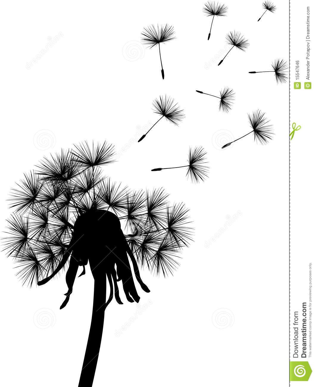 Dandelion clipart royalty free. Black plant stock image