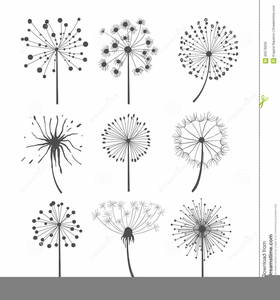 Dandelions images at clker. Dandelion clipart royalty free