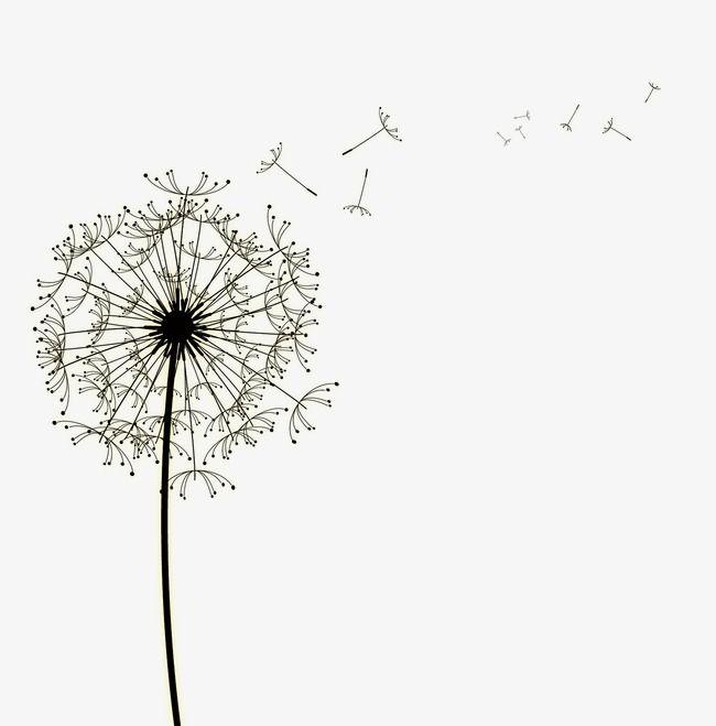 Dandelion clipart simple. Leaves floating petal bubble