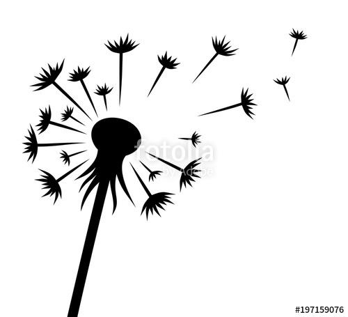 The flower stock image. Dandelion clipart vector