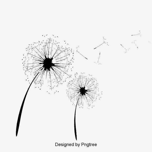 Dandelion clipart vector. Wind png transparent