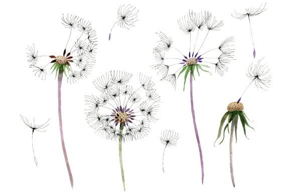 Bouquet rainbow png . Dandelion clipart watercolor