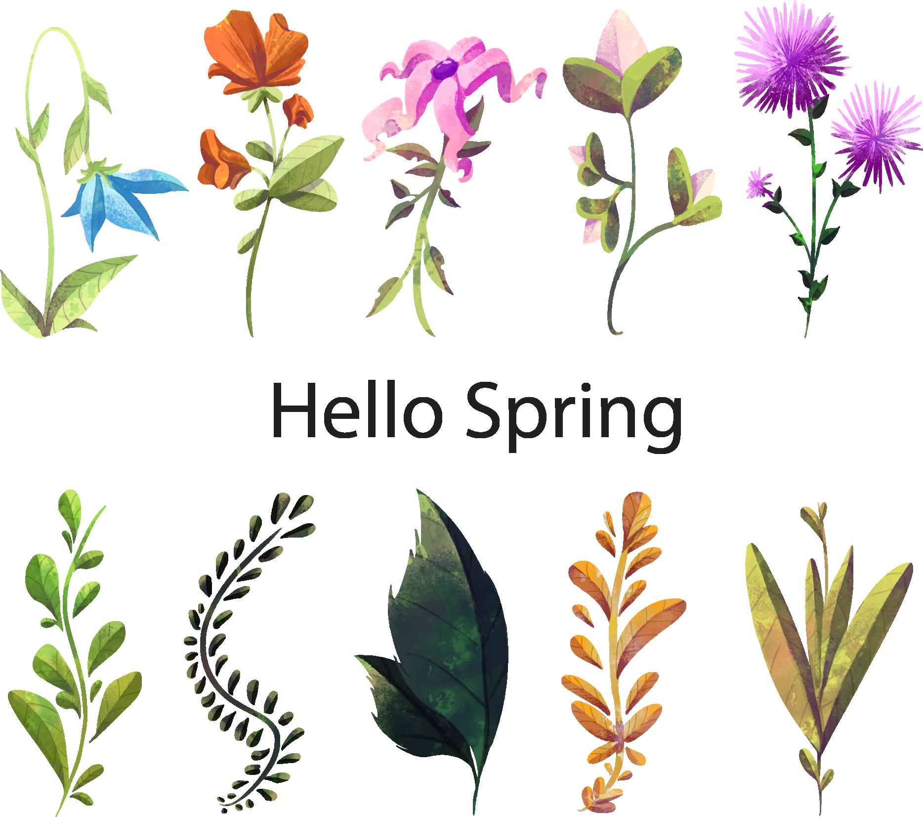 Dandelion clipart watercolor. Floral design painting flower