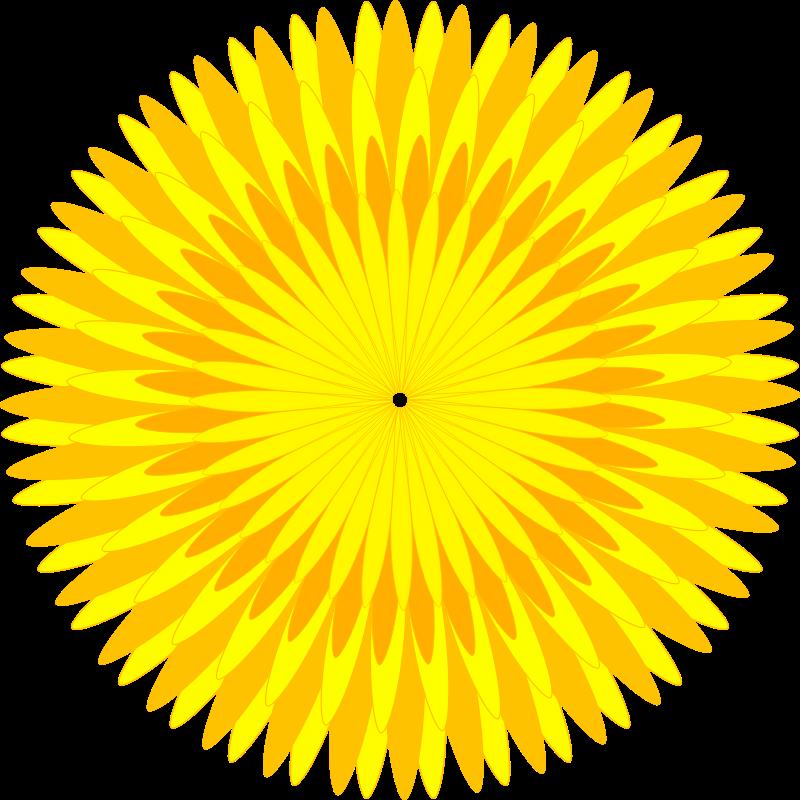 Medium image png . Dandelion clipart yellow dandelion
