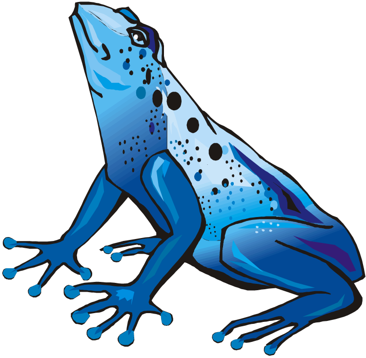 jungle clipart frog