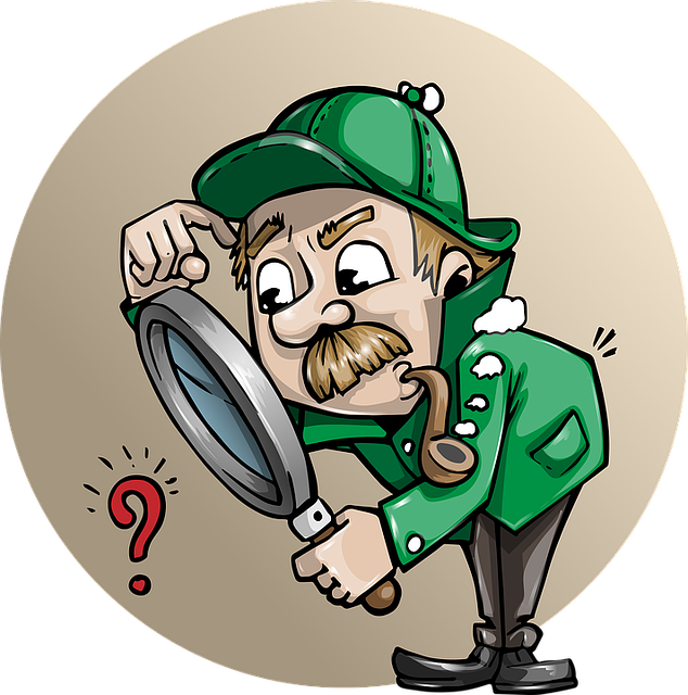 Internal audit plan questions. Evidence clipart auditor report