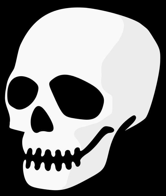 Mouth skull