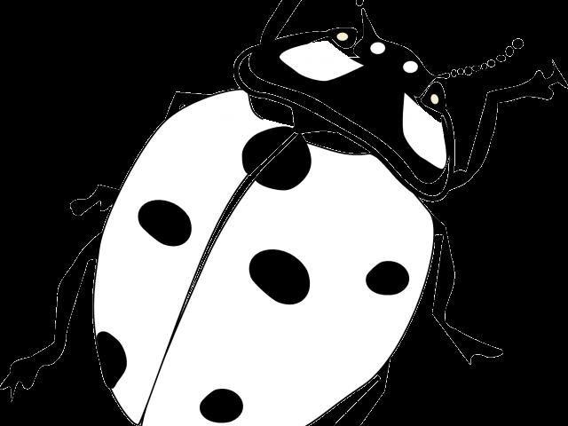Bug cliparts x carwad. Ladybug clipart dead