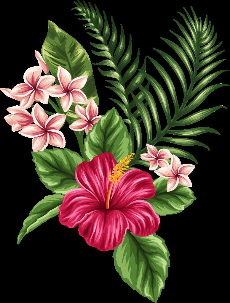 Hawaiian flower png. Resultado de imagen para