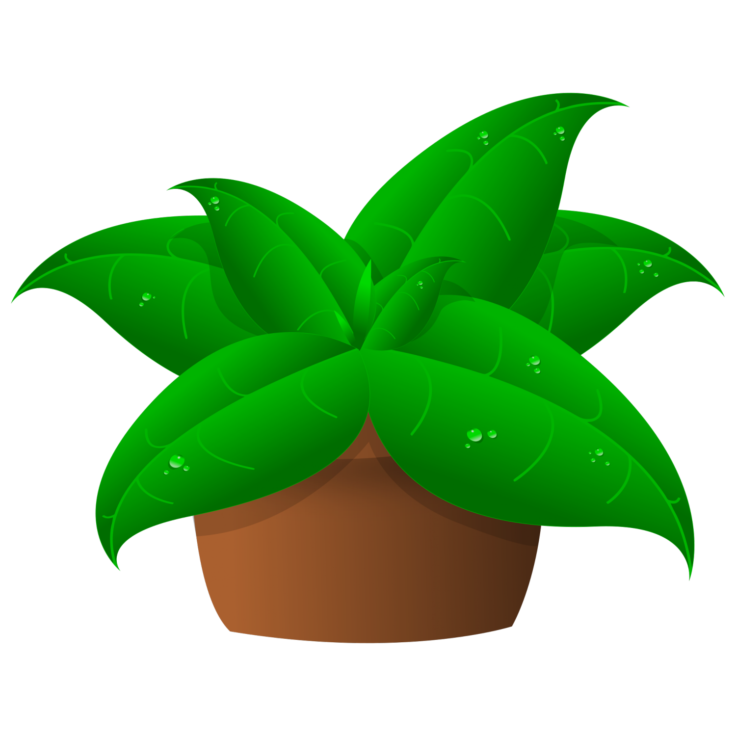 Png in pot dead. Plants clipart potted plant