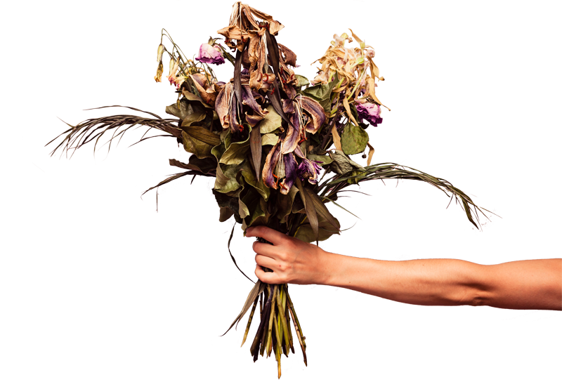Dead flower png. Dorable bouquet model best