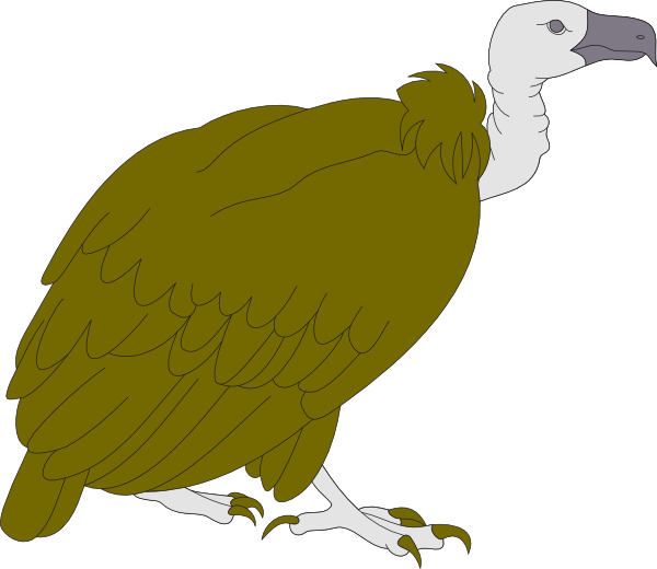 Clip art at clker. Wing clipart vulture