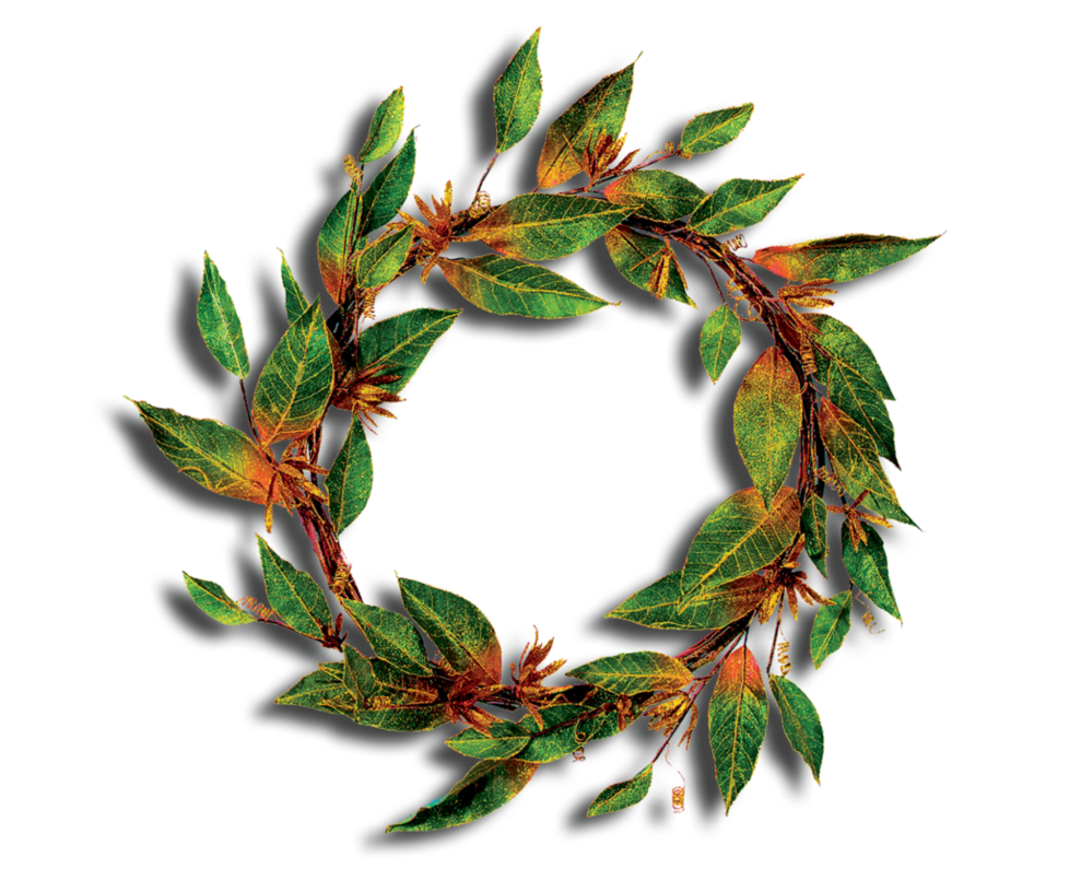 Decoration clipart cute. Green leaves png decorative