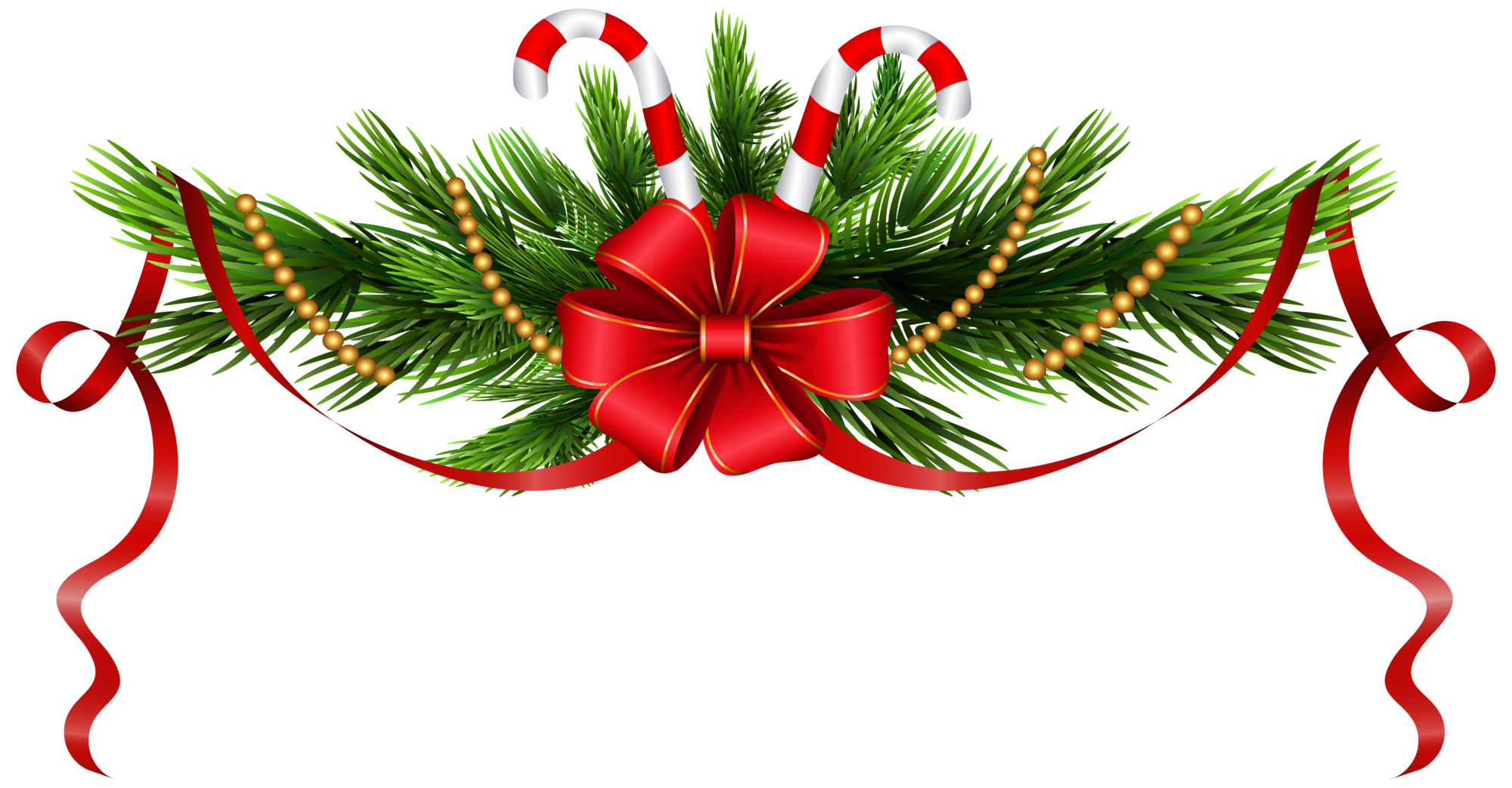 Christmas pine branches decoration. Ornament clipart leaf