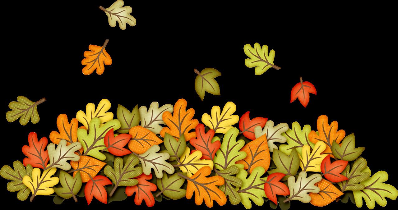Fall autumn field