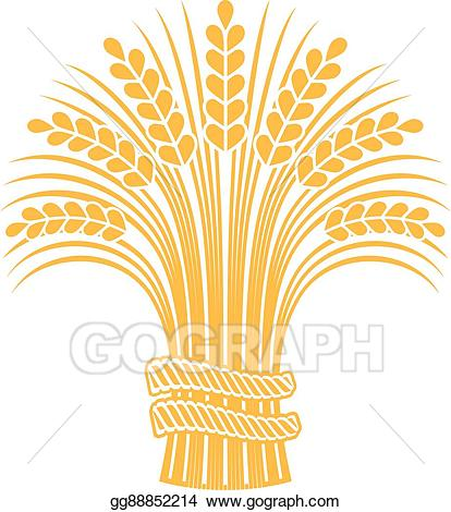 Vector illustration ripe sheaf. Wheat clipart decoration