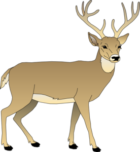 Male clip art at. Deer clipart