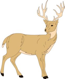 With fur clip art. Deer clipart