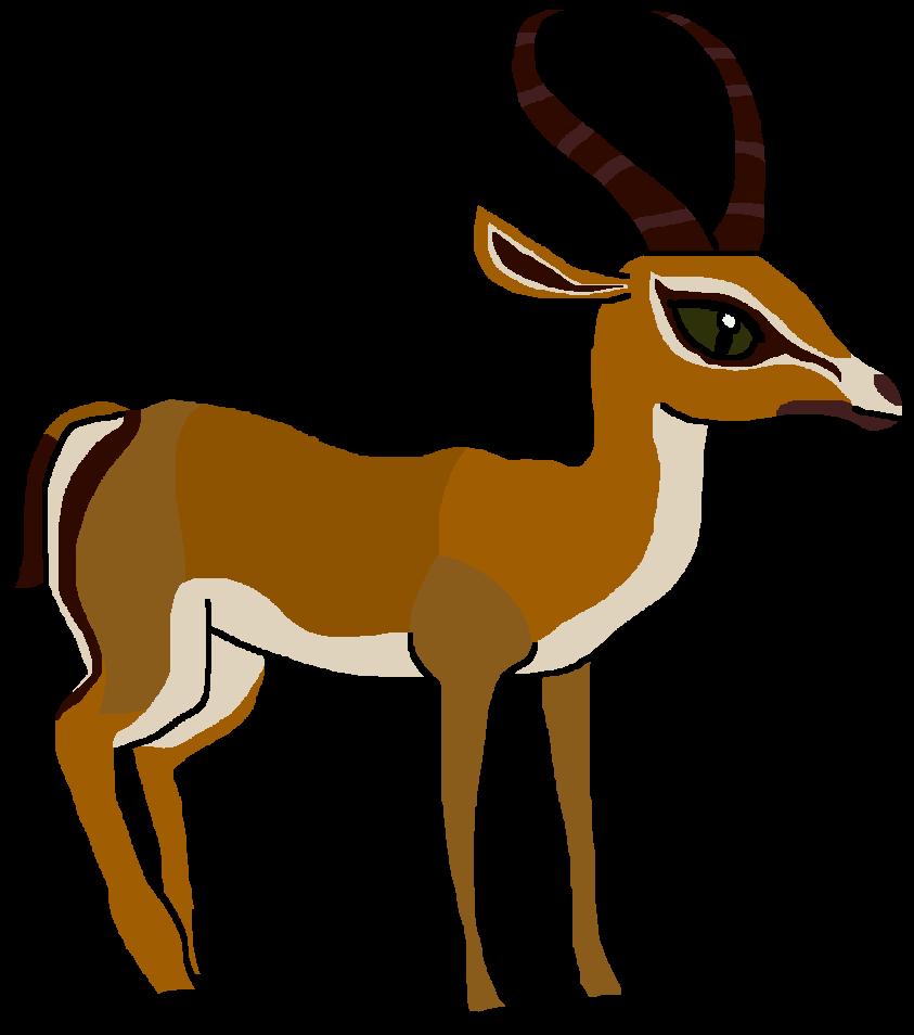 Deer antelope