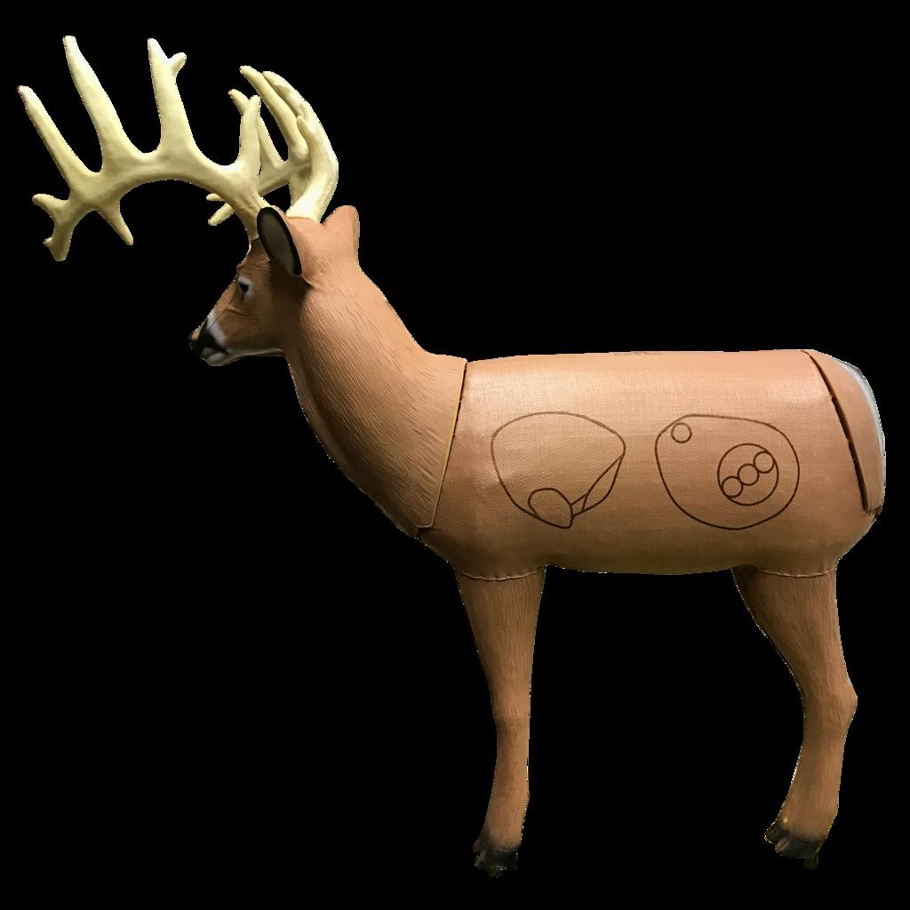 d archery targets. Deer clipart buck