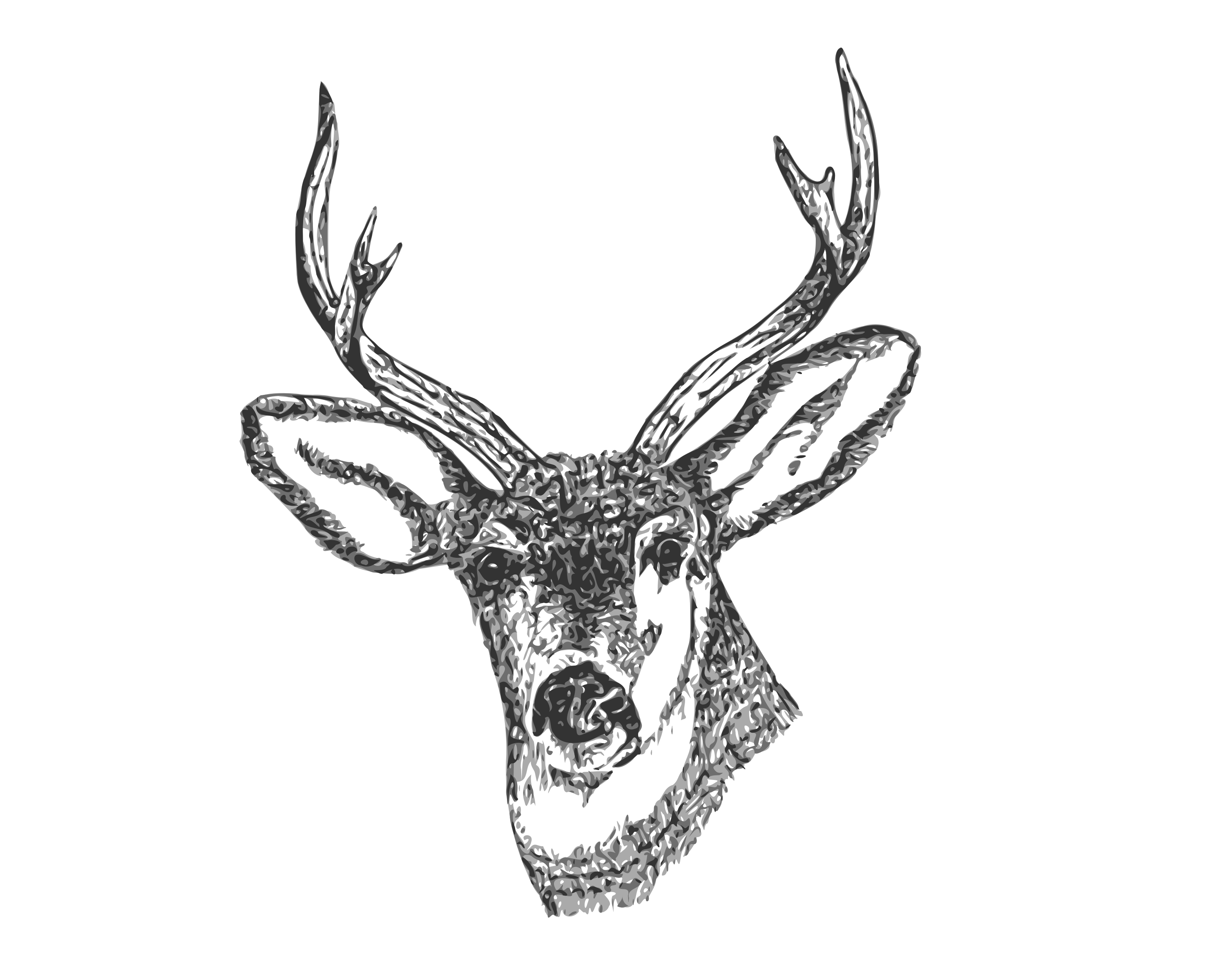 Fish clipart deer. Head big image png