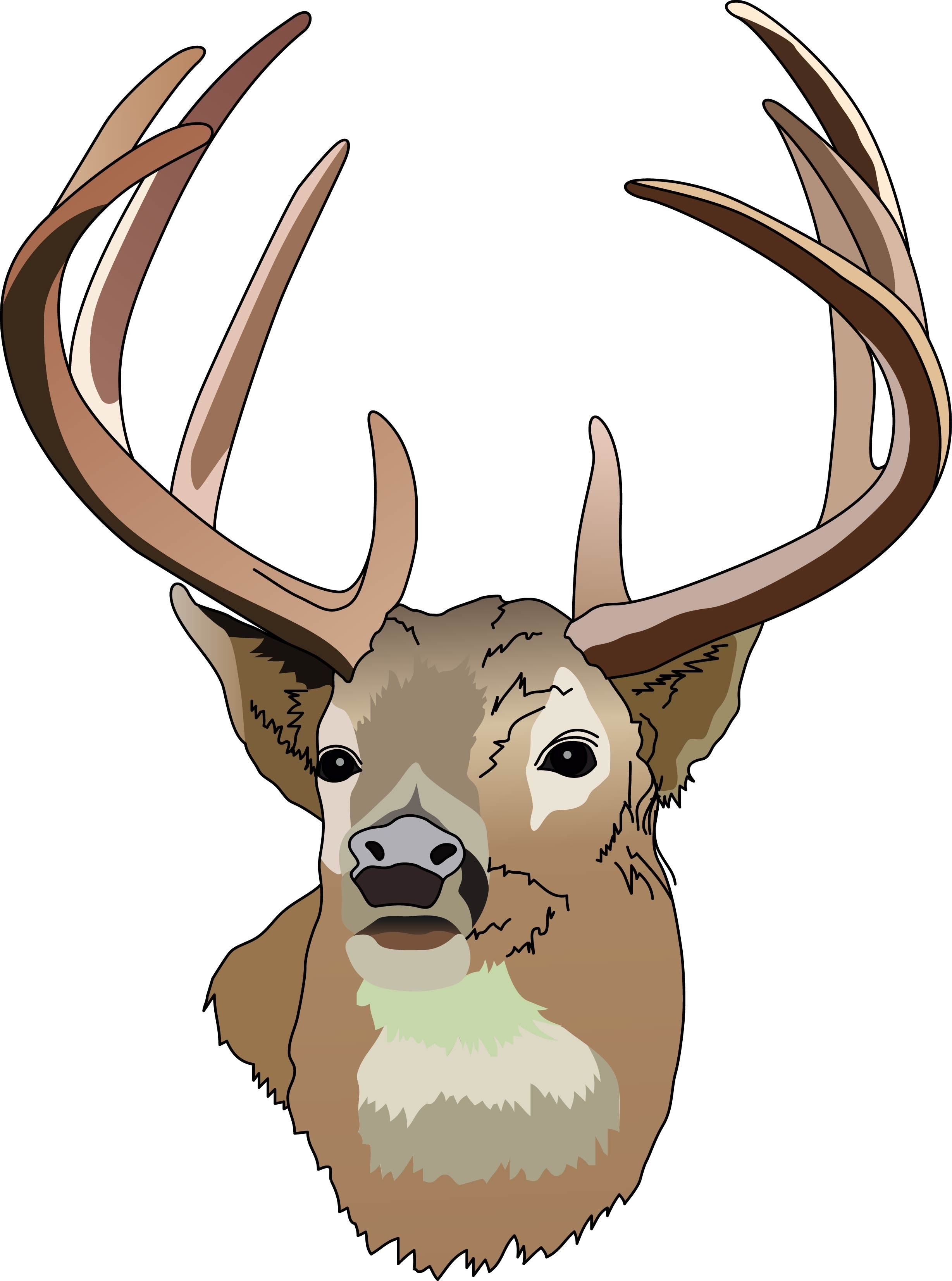 Hunting clipart stag head. Deer free wikiclipart