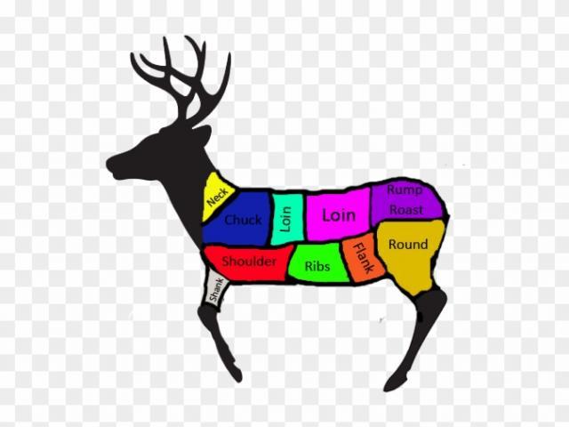 Deer clipart deer meat. Free download clip art