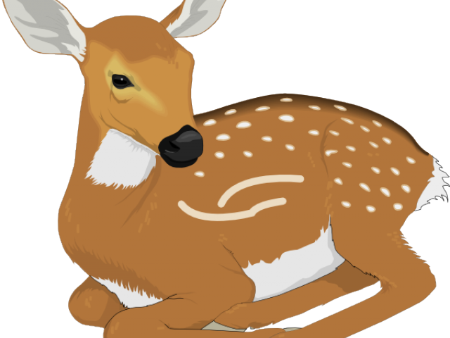 Silhouette free download clip. Deer clipart drinking