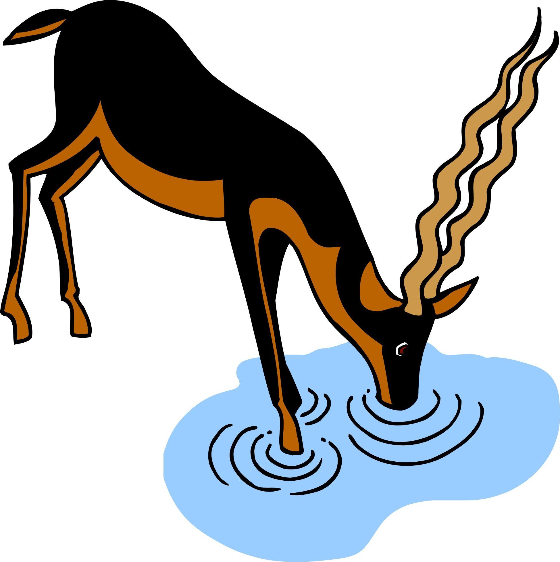 Water art in . Deer clipart drinking