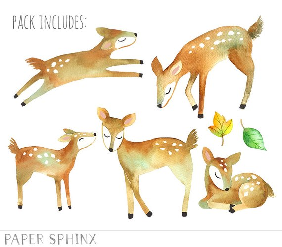 Watercolor deer mommy and. Woodland clipart fawn