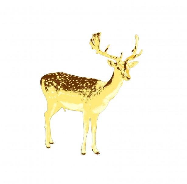 Deer clipart golden deer. Free stock photo public