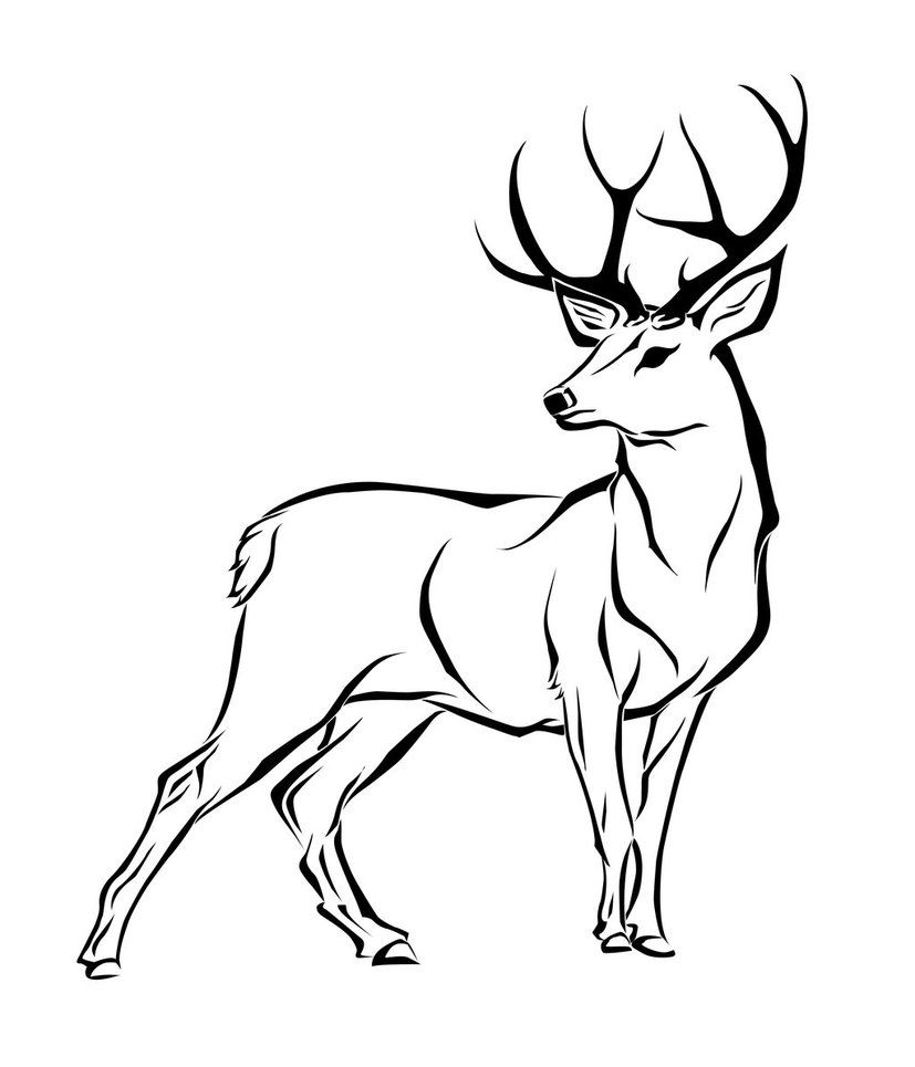 Best leather info and. Hunting clipart sambar deer