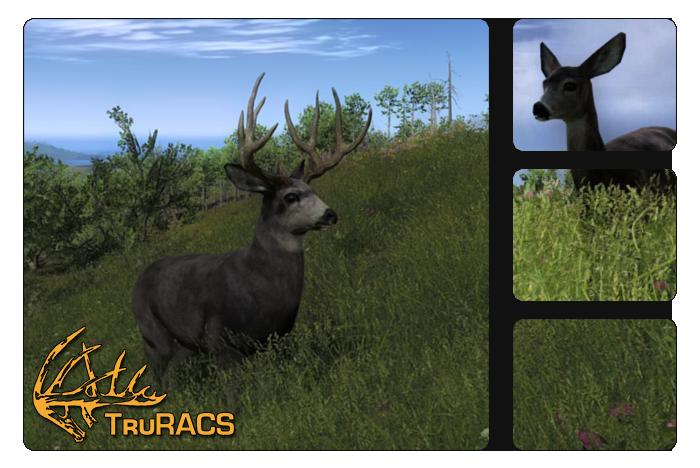 The hunter wikia fandom. Deer clipart mule deer