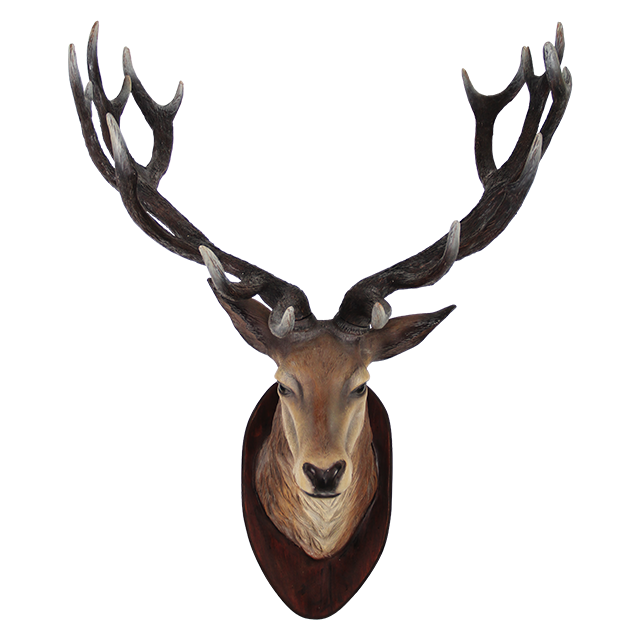 Deer clipart realistic. Png free icons and