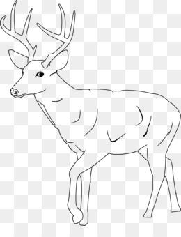 Png and transparent free. Deer clipart sambar deer