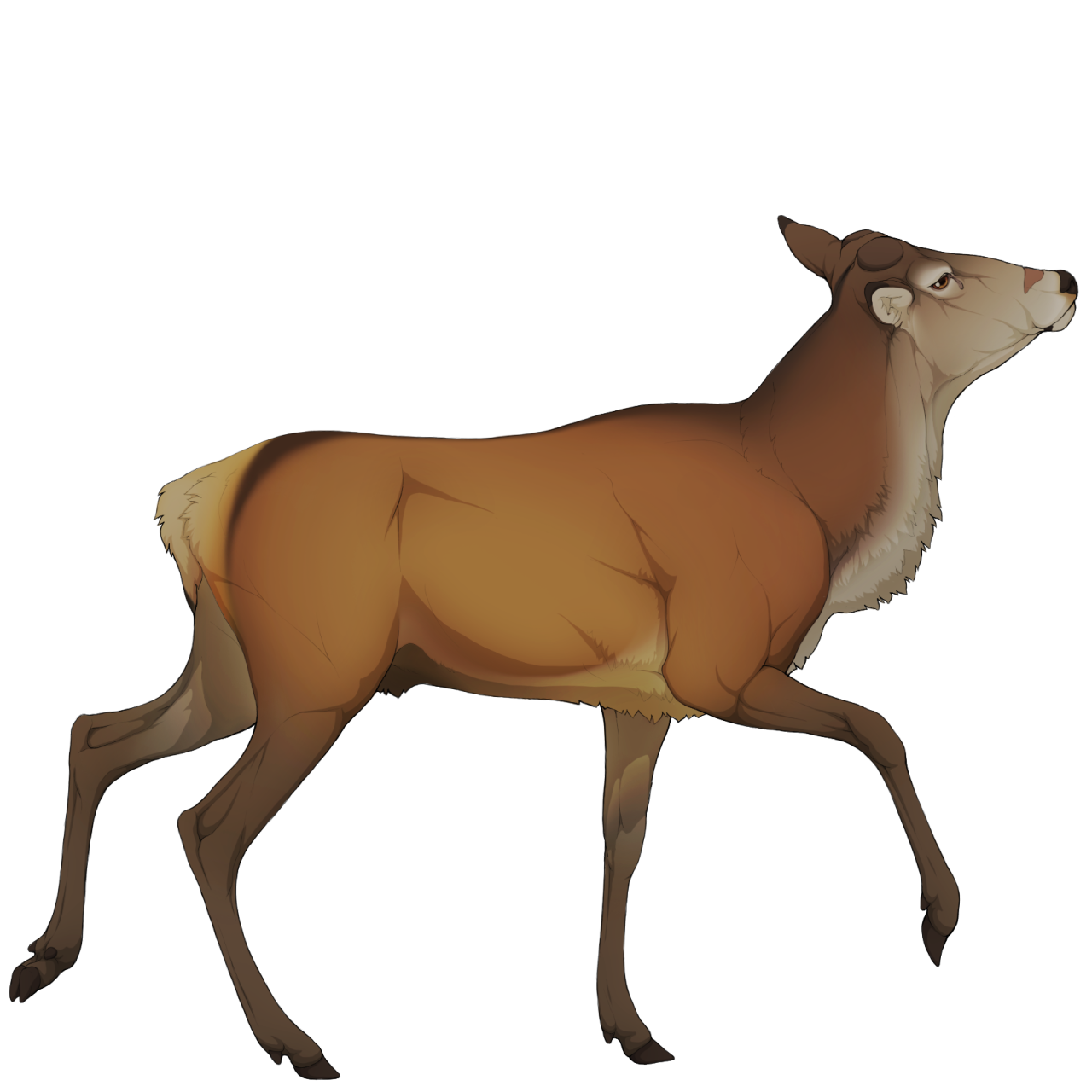 Deer clipart spotted deer. Shrine the endless forest