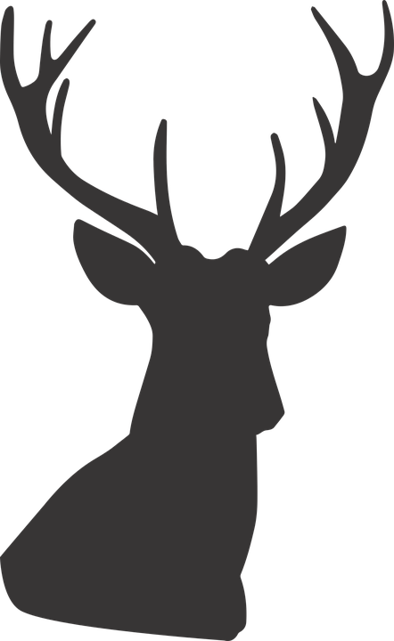 Free deer silhouette group. Horn clipart jpeg