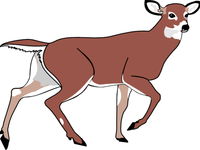 Deer clipart walking. Rug cliparts free download