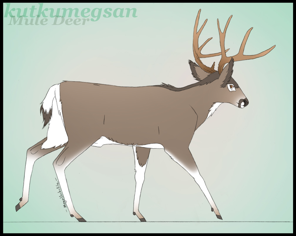 deer clipart walking