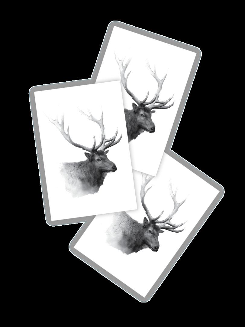 Deer clipart wapiti. Temporary tattoos elk set
