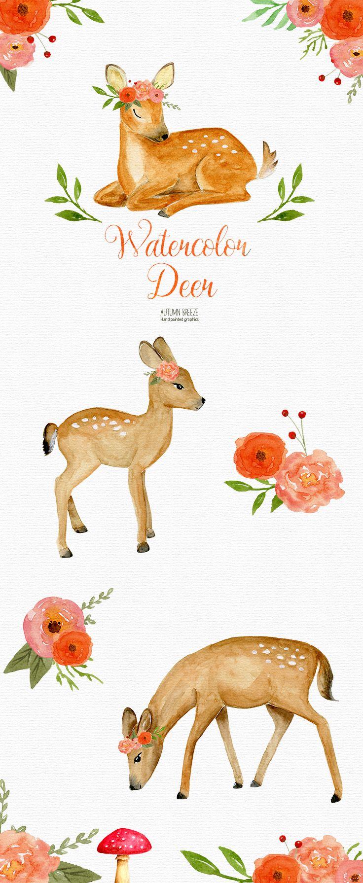 Baby . Deer clipart watercolor