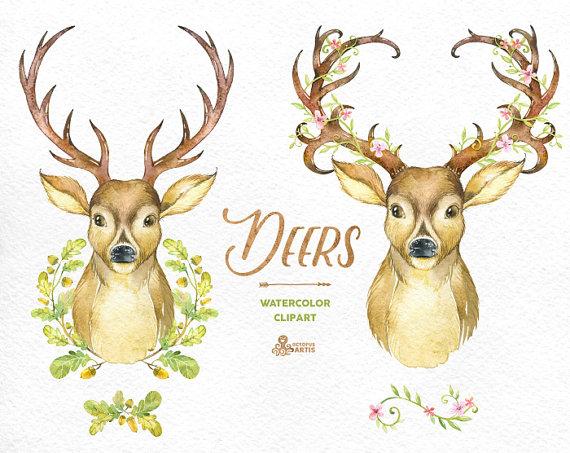Deer clipart watercolor. Deers with antlers hand