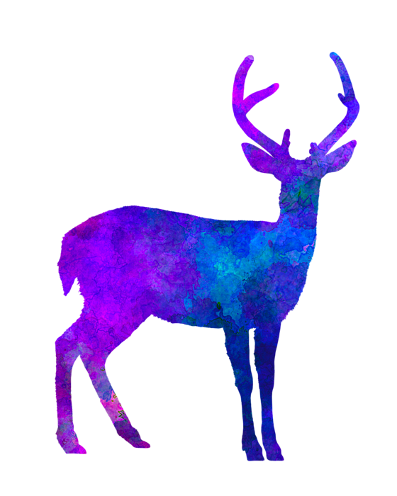 Deer clipart watercolor. Male in t shirt